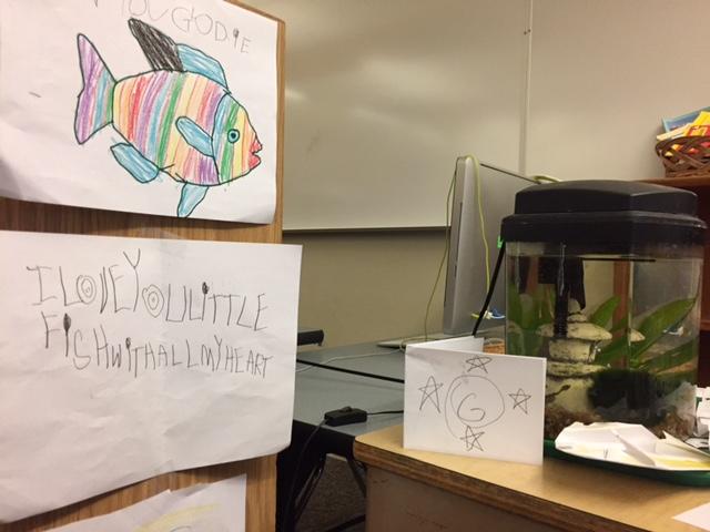 Ms. Maureen's Class Fish Altar